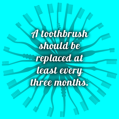 Bourbonnais Dentist gives toothbrush tips